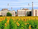 На российских АЭС ввели особый режим безопасности
