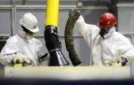 На Дальнем Востоке разрабатывают новые технологии утилизации ядерных отходов